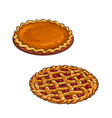 cherry and pumpkin pie thanksgiving dessert vector image vector image