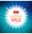 Hot Summer Sale Title on Blue Background vector image vector image