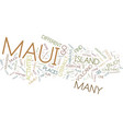 maui fun for everyone text background word cloud vector image vector image