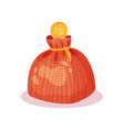 money box in form of small bag with rope and coin vector image vector image