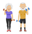 senior people couple with dumbbells smiling vector image