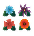 set of beautiful colorful flowers vector image vector image