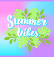 summer vibes lettering with tropical leaves and vector image vector image
