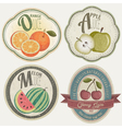 Vintage Label Collection with Fruit vector image vector image
