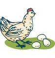 young beige hen and eggs vector image