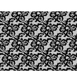 Lace black seamless pattern vector image
