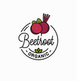 beetroot vegetable logo round linear slice vector image