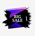 big sale banner with frame and gradient paint vector image vector image