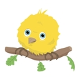 Cute bird on branch vector image vector image