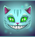 fantasy scary smiling cat face vector image vector image