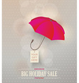 Sale poster with classic elegant opened red vector image vector image
