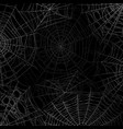 spider web background spooky cobweb for halloween vector image