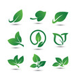 abstract leaf logo icon template vector image vector image