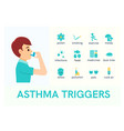 asthma triggers flat icons vector image