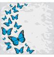 butterflies blue vector image