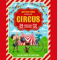 Circus or carnival top tent acrobat strongman