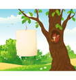 Forest placard and squirrel vector image vector image