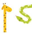 giraffe with spot long neck green python snake vector image vector image