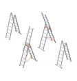 Isometric ladder Set of various ladders on the vector image vector image