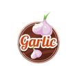 Garlic Spice vector image vector image