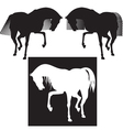 silhouette horses vector image vector image