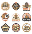 vintage colored organic food emblems set vector image vector image