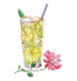 watercolor lemonade vector image