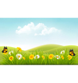 Beautiful summer landscape background vector image vector image