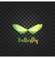 Isolated green butterfly logo Insects vector image vector image