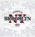 new york united states of america varsity vector image vector image