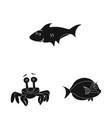 sea and animal icon vector image