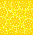 slices of lemon texture vector image vector image