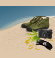 sunglassesshoecamera with flower and leaf on the vector image vector image
