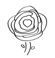 isolated rose drawing vector image vector image