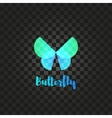 Isolated turquoise butterfly logo Insects vector image vector image