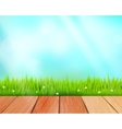 rustic wooden planks and grass on blue vector image vector image