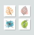 trendy botanical design elements square card set vector image