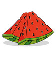 watermelon fresh and healthy fruit vector image vector image