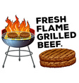Grilled beef on the bbq stove vector image