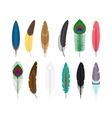 Colored feathers icons vector image