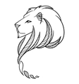 Lion Head Print for textile or vector image