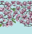 magnolia and cherry spring composition vector image