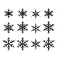 set of snowflakes in many style vector image vector image