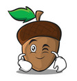 wink acorn cartoon character style vector image vector image