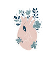 anatomical heart with flowers and different plants vector image