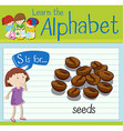 Flashcard letter S is for seeds vector image vector image
