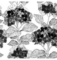 floral seamless pattern with hydrangea flowers on vector image