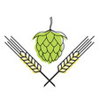 hop and barley emblem icon label logo beer pub vector image vector image
