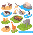 isometric zoo animal set vector image vector image