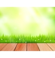 rustic wooden planks and grass on blue vector image